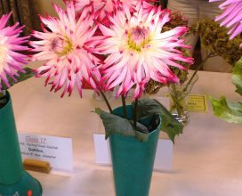 horticultural-show-01
