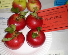 horticultural-show-06