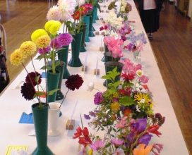 horticultural-show-10