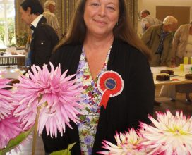 horticultural-show-11