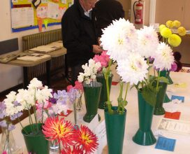 horticultural-show-17